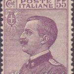 55 Centesimi violetto bruno Vittorio Emanuele ★★